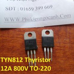 TYN812